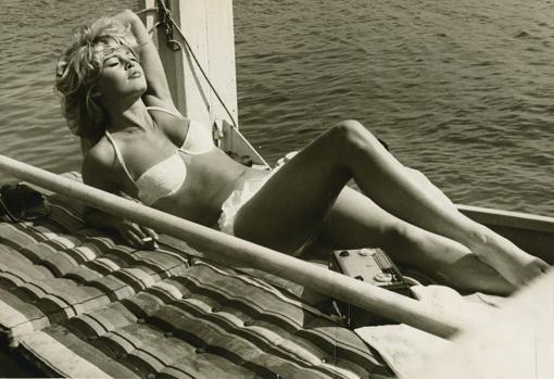 Brigitte Bardot La Rebelde Y Sus Causas
