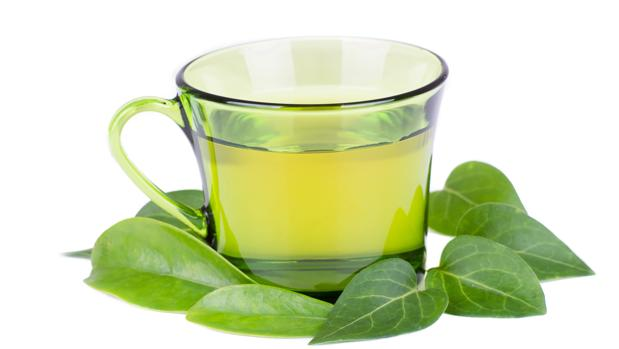 como se toma el te verde para bajar de peso