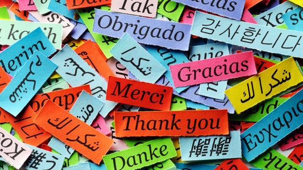 Día de acción de gracias: Decir «gracias» nos hace más felices y ...