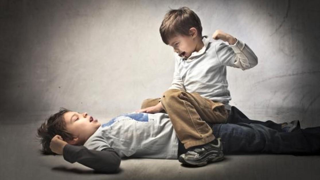 Es Un Error Intentar Poner Paz Cuando Se Pelean Dos Hermanos