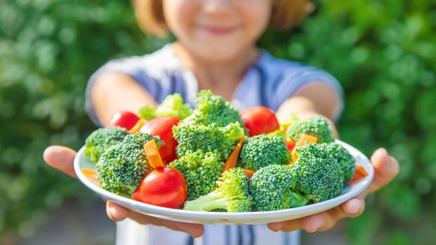 dieta vegetariana en niños pequeños