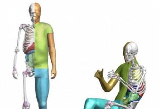 el software gratuito de modelación humana de toyota triunfa en descargas El software gratuito de modelación humana de Toyota triunfa en descargas 500 thums dummiesvirtuales softwaregratis2 20210701123359 U88657470303Lqj 510x349 abc