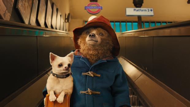 El oso Paddington ha logrado un récord sin precedentes