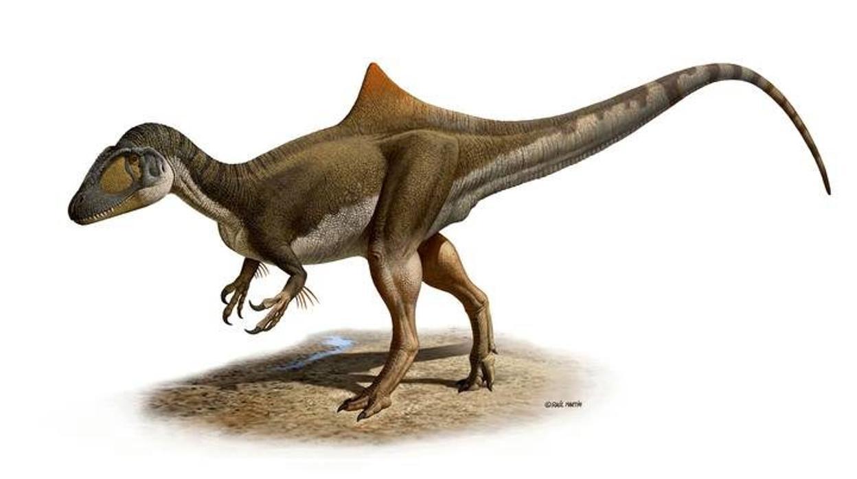 El Otro Espanol De Jurassic World El Dinosaurio Pepito Que Paseo Por Cuenca Hace 125 Millones De Anos Un video que haremos primero un puzzle y. jurassic world el dinosaurio pepito