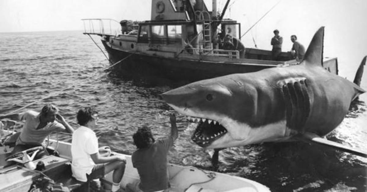 45 Años De Tiburón El Escualo Gigante Que Aterrorizó A Una Generación De Bañistas