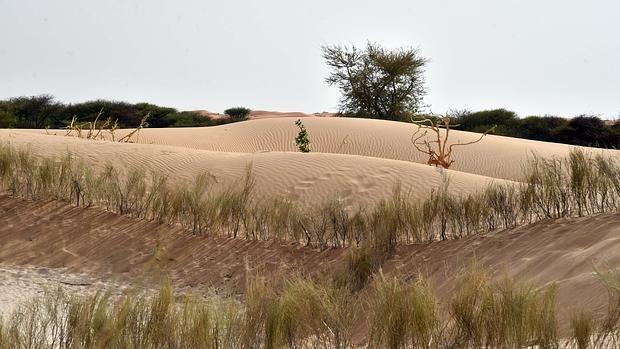 Fotografía tomada en las afueras de Diffa, en Níger, país que ha sufrido inundaciones, sequías y hambrunas recientemente