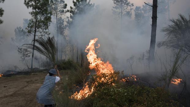 Una ciudadana intenta apagar el fuego en el Vale De Cambra, Portugal