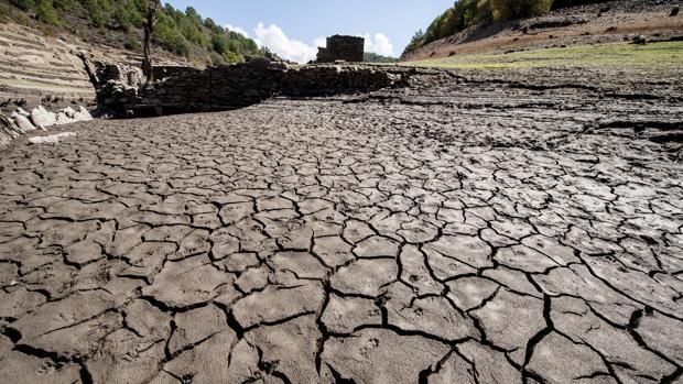 Resultado de imagen para Ciclo de Charlas: Cambio Climático y Producción Agropecuaria.