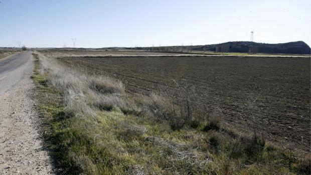 Terrenos donde está previsto construir el almacén nuclear