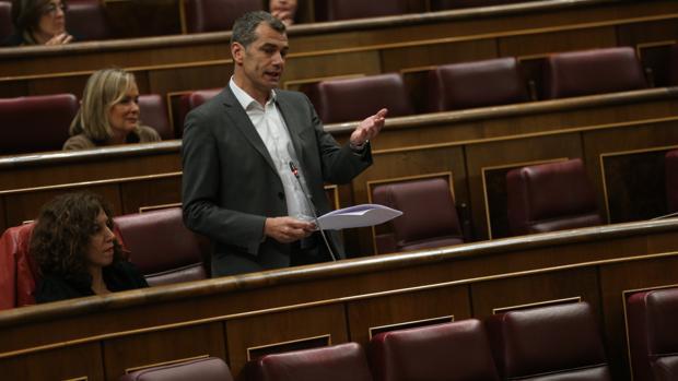El diputado de Ciudadanos, Toni Cantó