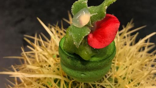 Cactus de lima, tequila y hojas verdes de ABaC