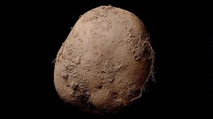 La patata de un millón de euros