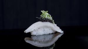 Siete exclusivos restaurantes para disfrutar del sushi en Madrid