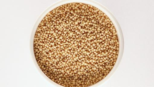 El amaranto es una buena fuente del aminoácido lisina