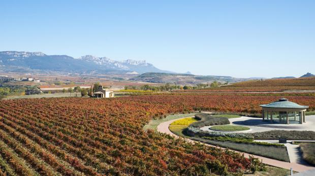 Instalaciones de Dinastía Vivanco, en La Rioja