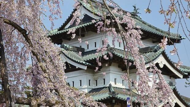 Castillo de Hirosaki, situado en la ciudad de Hirosaki